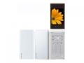 SAMSUNGSoftBank 740SC ホワイト