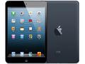 Appleau iPad mini Cellular 16GB ブラック&スレート MD540J/A