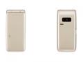 PanasonicSoftBank COLOR LIFE 4 WATERPROOF 301P ゴールド