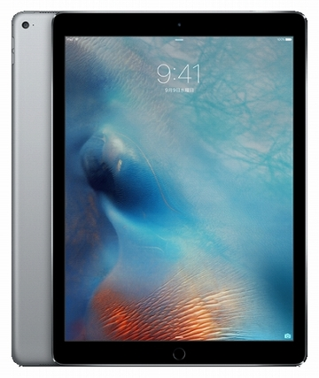 SoftBank iPad Pro 12.9インチ(第1世代) Cellular 256GB スペースグレイ ML2L2J/A