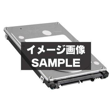 HGSTHCC547550A9E380 500GB/5400rpm/3GbpsSATA/9.5mm