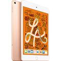 Appleau 【SIMロック解除済み】 iPad mini(第5世代/2019) Cellular 64GB ゴールド MUX72J/A